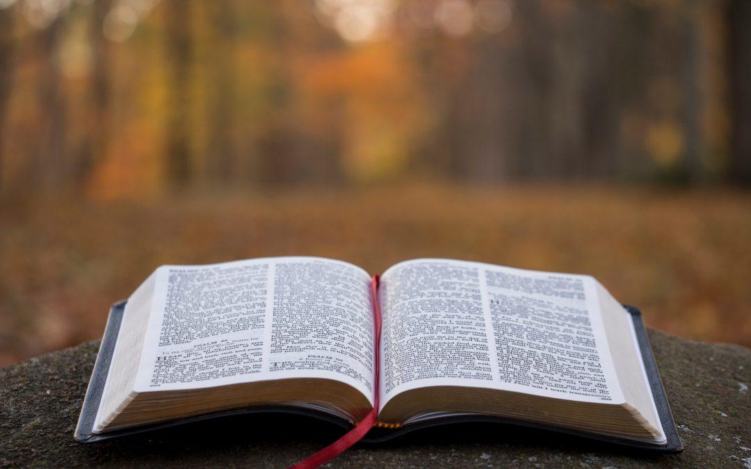 Program Biblijny